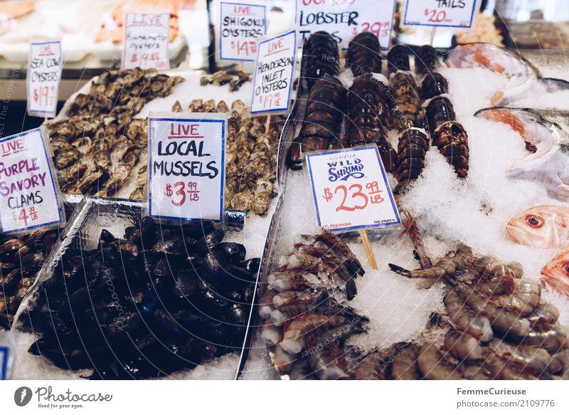 Roadtrip West Coast USA (243) Lebensmittel Fisch Meeresfrüchte Ernährung Tier genießen Garnelen Muschel Hummer Fischmarkt Markttag Markthalle Eis Preisschild