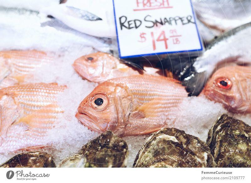 Roadtrip West Coast USA (242) Tier genießen Fischmarkt Markttag Englisch Rote Schnapper Raubfisch Fischverkäufer Preisschild Eis US-Dollar Farbfoto