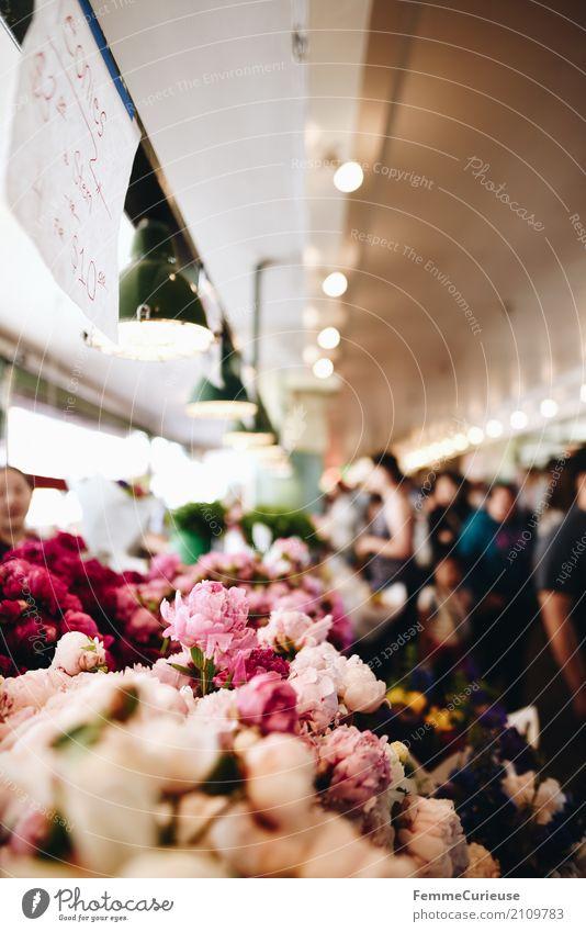 Roadtrip West Coast USA (258) Pflanze Duft Markthalle Wochenmarkt Seattle Pfingstrose Blume Blüte Kunde Tourist Hinweisschild Farbfoto Innenaufnahme Tag