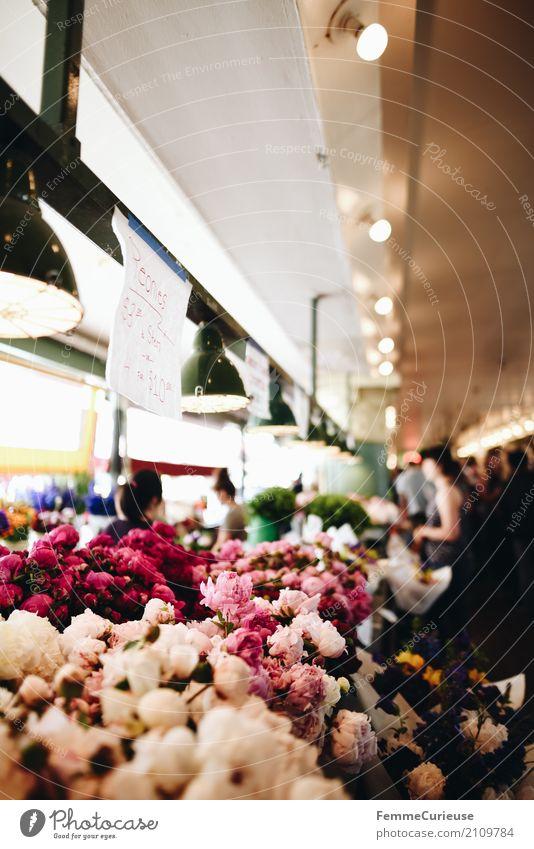 Roadtrip West Coast USA (260) Pflanze Duft Markthalle Markttag Seattle Pfingstrose Blume Blüte mehrfarbig Hängelampe Kunde kaufen Händler Lichtpunkt