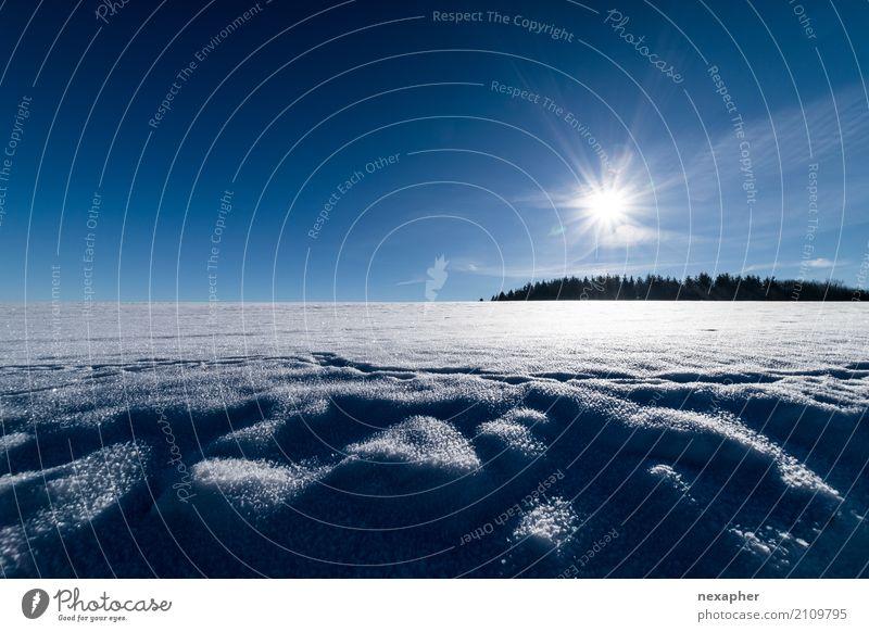 Eislandschaft Ausflug Expedition Winter Schnee Winterurlaub wandern Umwelt Natur Landschaft Himmel Sonne Klima Schönes Wetter Frost Baum Hügel atmen beobachten
