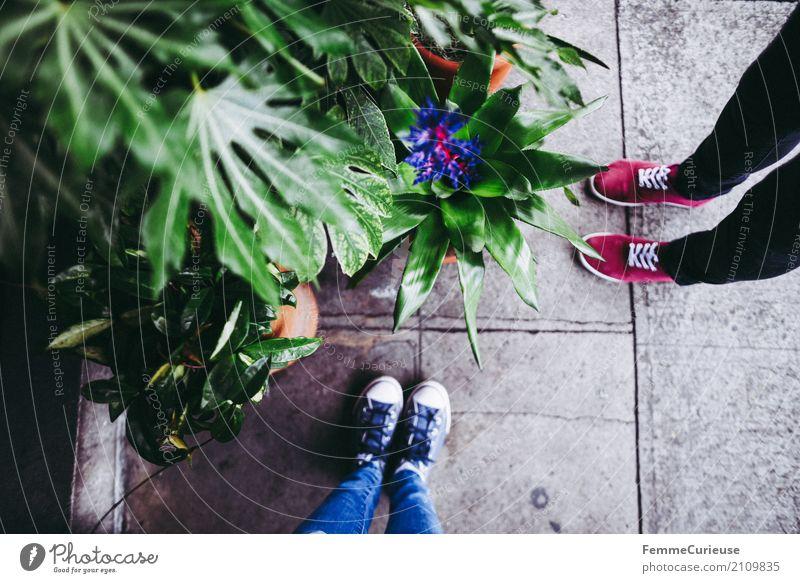 Roadtrip West Coast USA (165) Mensch Frau Jugendliche Pflanze blau Junge Frau Stadt rot 18-30 Jahre Erwachsene Beine feminin Fuß Freizeit & Hobby