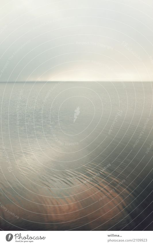 seeschwäche Natur Wasser Ostsee Meer grau Reflexion & Spiegelung sanft Abenddämmerung Wolkendecke Usedom Vorpommersche Boddenlandschaft ruhig Horizont