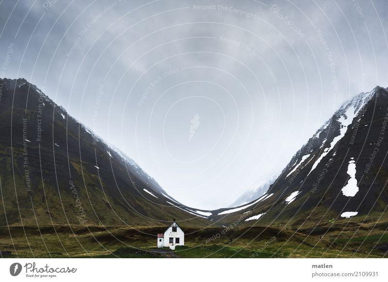 mutig Himmel Natur Pflanze grün weiß Landschaft Einsamkeit Wolken dunkel Berge u. Gebirge Frühling Schnee Gras außergewöhnlich grau braun