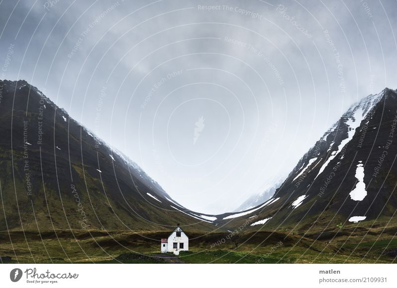 mutig Natur Landschaft Pflanze Urelemente Himmel Wolken Frühling Wetter schlechtes Wetter Wind Regen Schnee Gras Felsen Berge u. Gebirge Schlucht Fjord