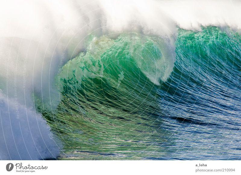 only the ocean Ferne Sommerurlaub Meer Wassersport Surfen Urelemente Wellen Küste Riff Tropfen Bewegung glänzend Flüssigkeit gigantisch groß blau grün Kraft