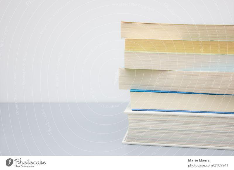Bücherstapel lesen lernen hell grau weiß Weisheit klug Interesse Beginn Bildung Erfahrung planen Wissen Buch Stapel neutral minimalistisch Erwachsenenbildung
