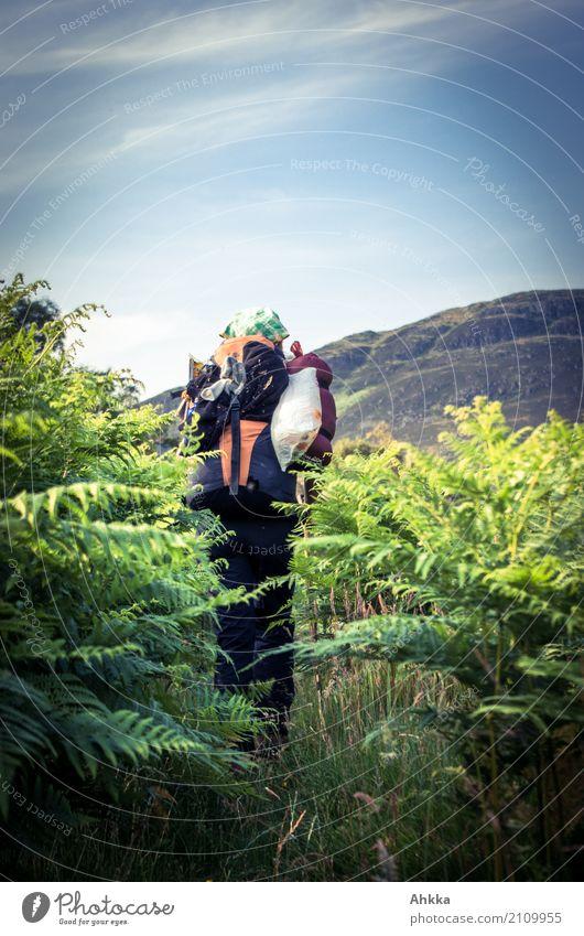 Rückansicht, Junge Frau mit Wanderrucksack im grünen Blätterwald Natur Ferien & Urlaub & Reisen Jugendliche blau Ferne Umwelt Wege & Pfade Ausflug Beginn