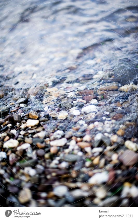 Steine (zum hüpfen lassen) Umwelt Natur Wasser Sonnenlicht Sommer Schönes Wetter Küste Flussufer Bach Rhein steinig Kieselsteine nass Farbfoto Gedeckte Farben