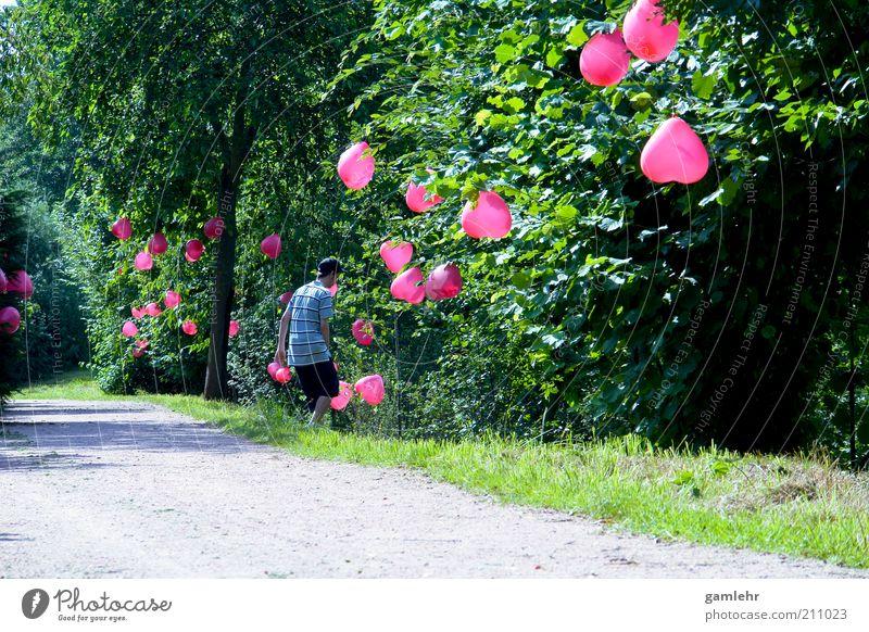 Hochzeitsweg Natur Mann Baum Pflanze Landschaft Umwelt Liebe Gefühle Wege & Pfade Glück Feste & Feiern Park rosa Herz Fröhlichkeit Dekoration & Verzierung