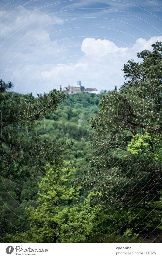 Wartburg Natur Himmel Baum Sommer Ferien & Urlaub & Reisen ruhig Ferne Wald Leben Berge u. Gebirge Freiheit Landschaft Umwelt Zeit Ausflug Idylle