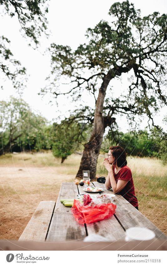 Roadtrip West Coast USA (160) feminin Junge Frau Jugendliche Erwachsene Mensch 18-30 Jahre 30-45 Jahre Natur Holzbank Bank sitzen Naturliebe Camping
