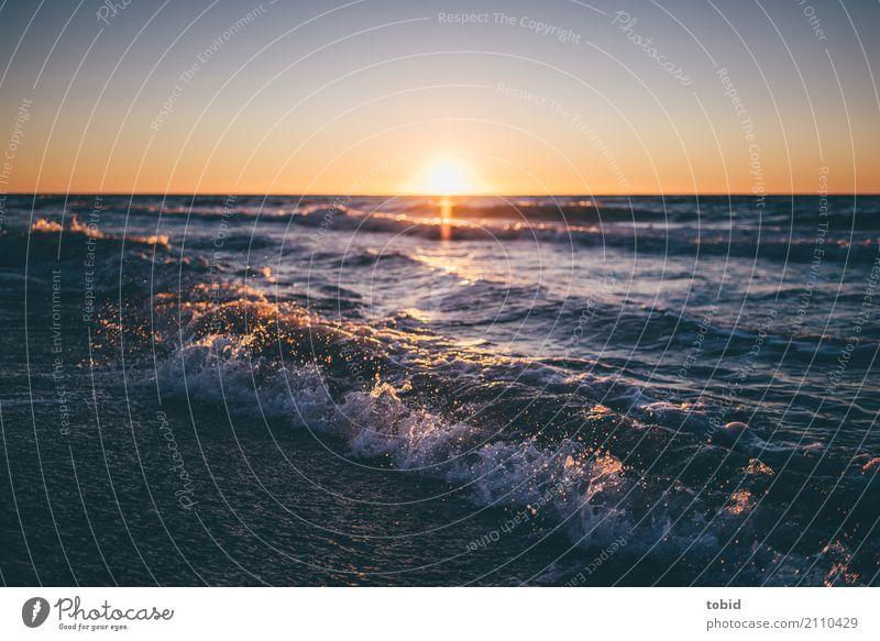 Sunset Natur Urelemente Wasser Himmel Wolkenloser Himmel Horizont Sonne Sonnenaufgang Sonnenuntergang Schönes Wetter Wellen Küste Strand Nordsee Ferne