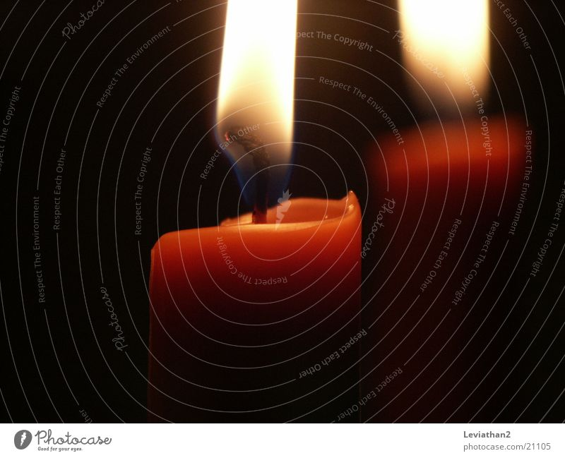 Advent, Advent... Kerze Wachs Flackern Dinge Kerzendocht Flamme Nahaufnahme Brand