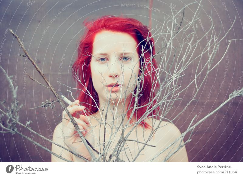 herbstkönigen. Mensch Jugendliche rot Pflanze Erwachsene feminin Wand Haare & Frisuren Traurigkeit Mauer Denken träumen Haut frei außergewöhnlich authentisch