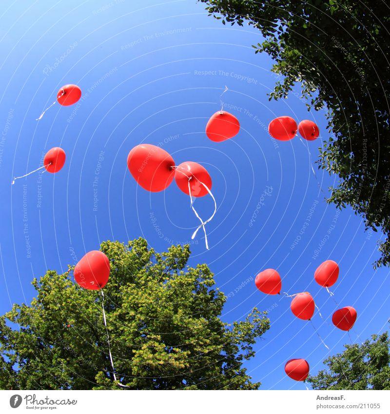 Ballons Himmel Sommer Baum rot Liebe Glück Luft Feste & Feiern Zusammensein fliegen Herz frei Luftballon Schnur Romantik Veranstaltung