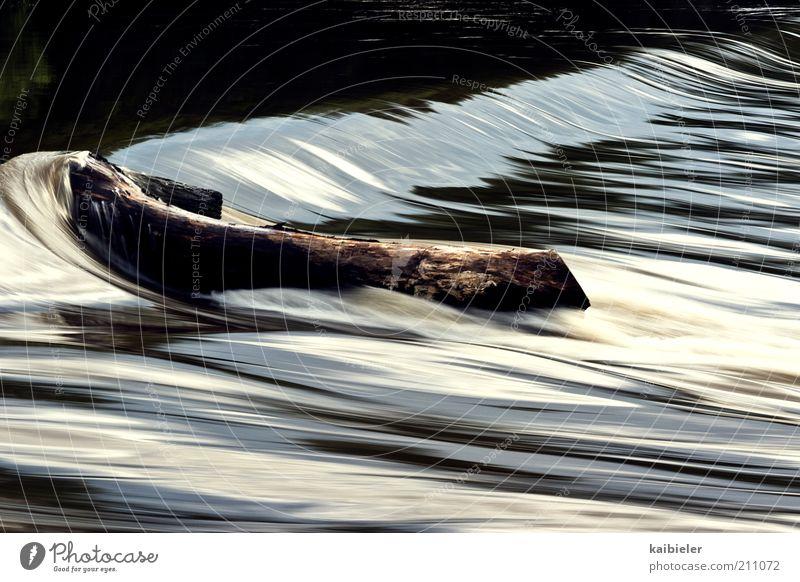 Im Fluss Natur Wasser Bewegung braun Umwelt Geschwindigkeit Fluss Flüssigkeit Dynamik Wasserfall fließen Strömung Bewegungsunschärfe Staustufe Saale Stromlinie