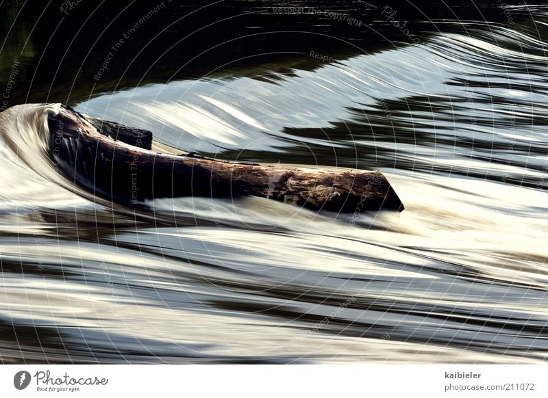 Im Fluss Umwelt Natur Wasser Wasserfall Flüssigkeit braun Bewegung Geschwindigkeit fließen Staustufe Saale Fließgewässer Farbfoto Außenaufnahme Menschenleer