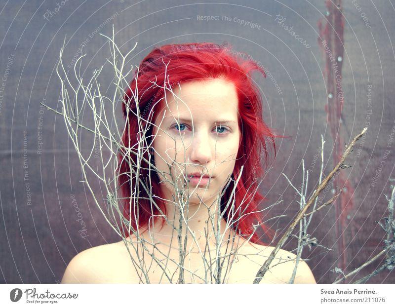 ohne rauch. feminin Junge Frau Jugendliche Haut 1 Mensch 18-30 Jahre Erwachsene Pflanze Ast Haare & Frisuren rothaarig Denken dehydrieren Wachstum