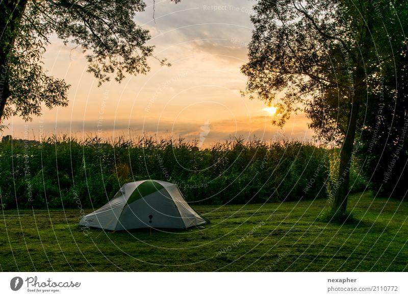 Zelt im Sonnenuntergang Lifestyle Freude Ferien & Urlaub & Reisen Abenteuer Freiheit Camping Sommer Sommerurlaub Umwelt Natur Landschaft Himmel Sonnenaufgang