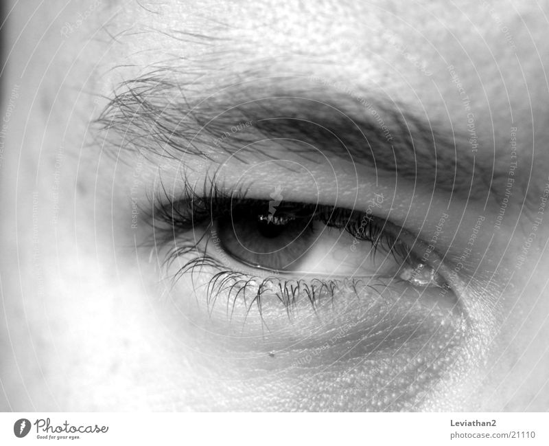 Der böse Blick Mann Auge Stimmung böse Laune