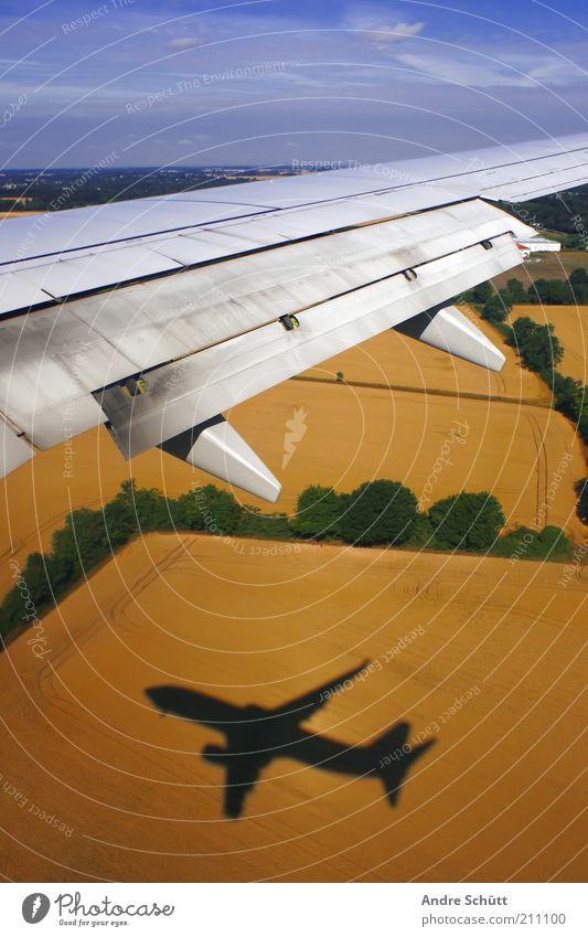 take off Ferien & Urlaub & Reisen Passagierflugzeug Flugzeugausblick fliegen Angst Tragfläche Feld Himmel blau gelb grün Ackerbau Landwirtschaft Schatten hoch