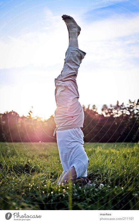 Zeit zum Aufstehen! Yoga Mensch Mann Erwachsene 1 fest frisch mehrfarbig Gefühle Gelassenheit Kontrolle Konzentration Kraft Kopfstand Asana Blauer Himmel grün