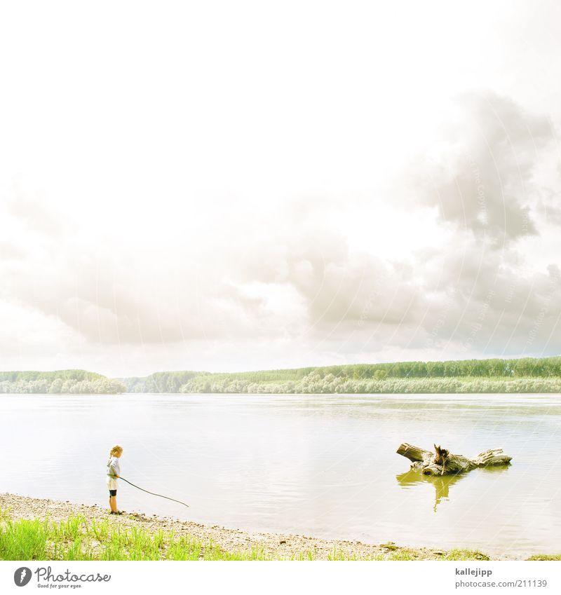 das mädchen und die donau Mensch Kind Natur Mädchen Himmel Baum Sonne Sommer Strand Ferien & Urlaub & Reisen Wolken Ferne Wald Leben Spielen Freiheit