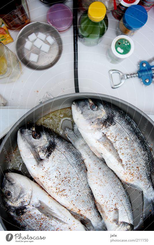 campingküche Lebensmittel Fisch Kräuter & Gewürze Öl Ernährung Mittagessen Bioprodukte Pfanne frisch gut lecker kochen & garen Farbfoto Außenaufnahme