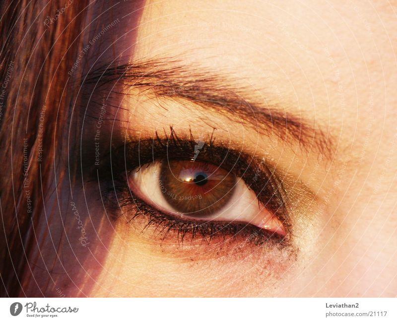 'Der Blick' geschminkt Schminke braun Wimpern Frau Auge Nahaufnahme Farbe l scharf Haare & Frisuren