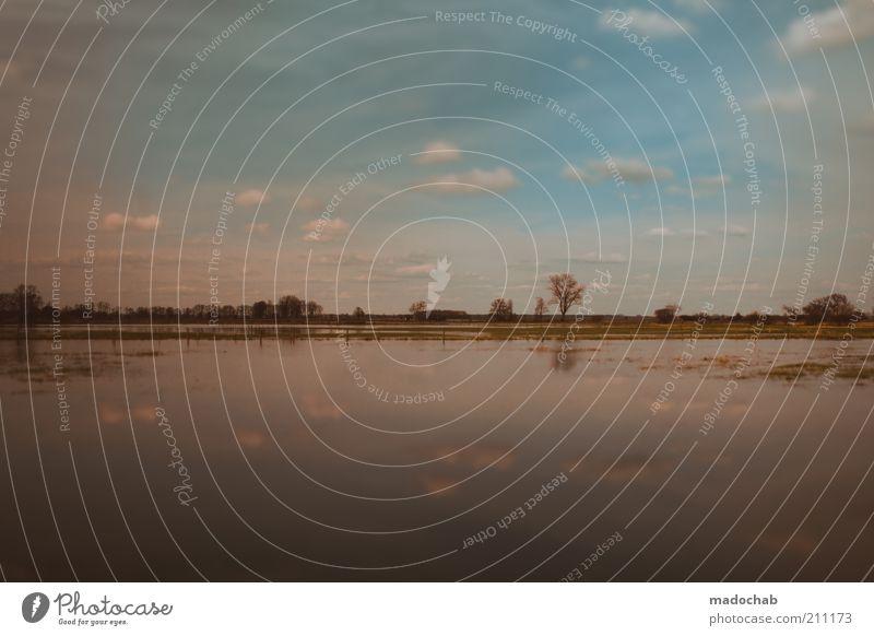 Käptn Fettauge sticht wieder in See Natur Landschaft Pflanze Wasser Klima Moor Sumpf Teich Flüssigkeit Überschwemmung Himmel Wolken Farbfoto Gedeckte Farben
