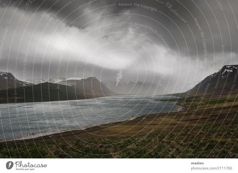 am Fjord Landschaft Wasser nur Himmel Wolken Horizont Frühling schlechtes Wetter Sturm Regen Gras Moos Wiese Felsen Schneebedeckte Gipfel Wellen Küste