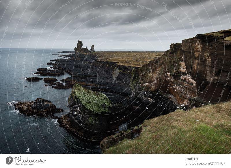 Snæfellsnes Natur Landschaft Pflanze Tier Himmel Wolken Horizont Frühling schlechtes Wetter Regen Gras Moos Felsen Küste Strand Meer bedrohlich dunkel
