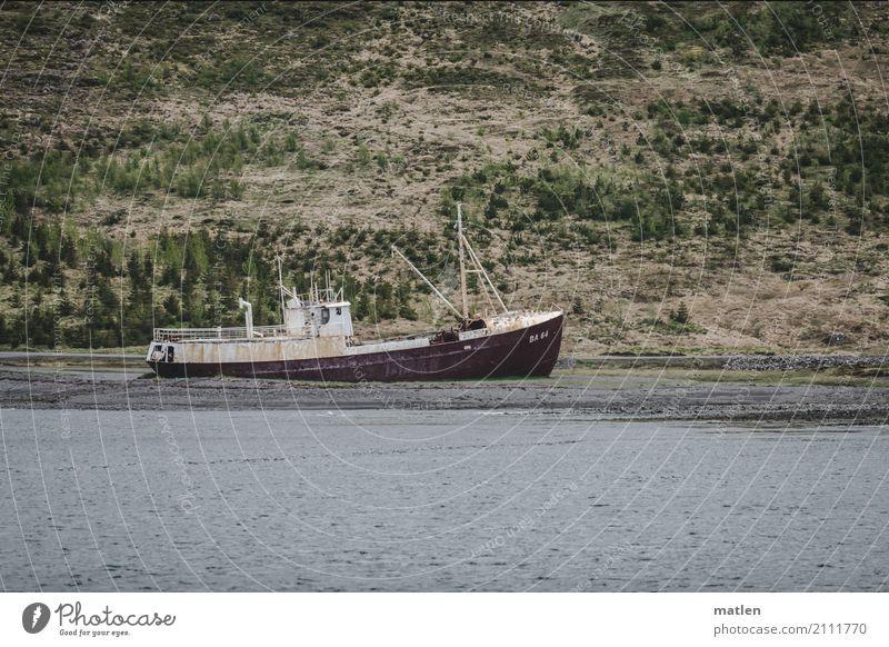 letzte Heuer Natur Landschaft Gras Küste Strand Fjord Meer Schifffahrt Fischerboot alt blau grau grün rot Schiffswrack gestrandet Island Farbfoto