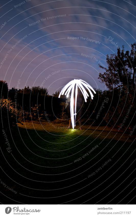 Palme im Garten Stil Lampe Sommer Pflanze Stimmung August Lichtspiel Baum Traumwelt Lichterscheinung Nacht Beleuchtung Abend Langzeitbelichtung Surrealismus