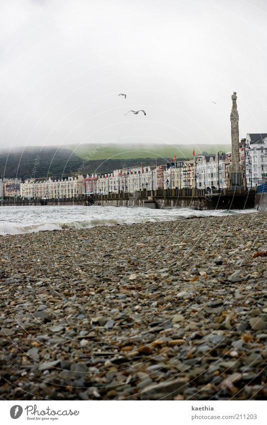 Strandgeflüster Himmel Wasser Stadt Meer Strand Wolken Landschaft Architektur Stein Küste Wellen Vogel Nebel fliegen Turm Möwe