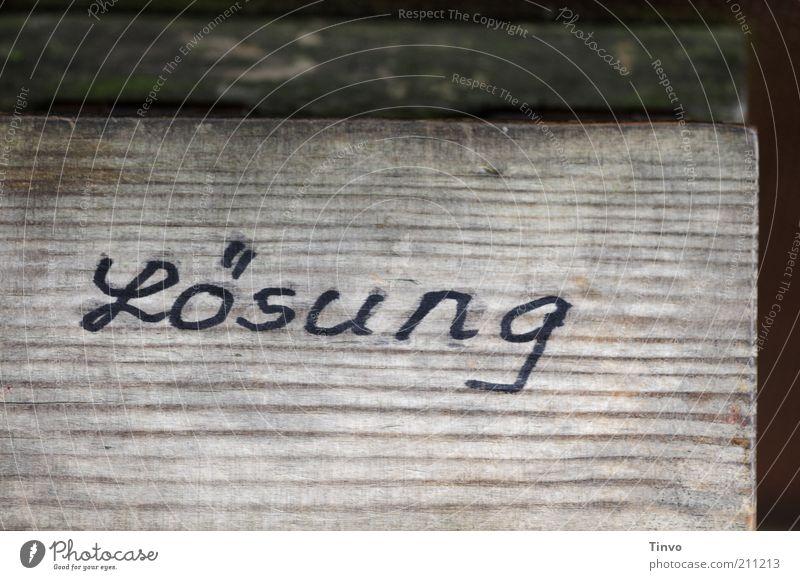 """Wort """"Lösung"""" auf Holz Schriftzeichen Schilder & Markierungen dunkel entdecken Kommunizieren Problemlösung raten erraten Antwort Holztafel Klapptafel Ratespiel"""