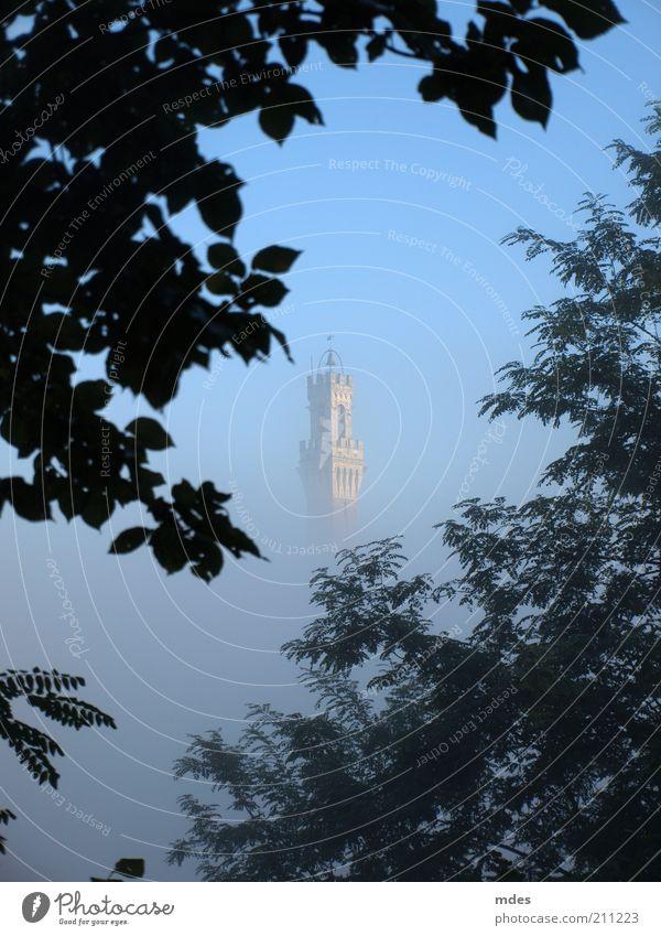 Campanile Siena alt blau Baum Ferien & Urlaub & Reisen Blatt Ferne Architektur Stein Gebäude Nebel Ausflug Tourismus Kirche Turm Sträucher