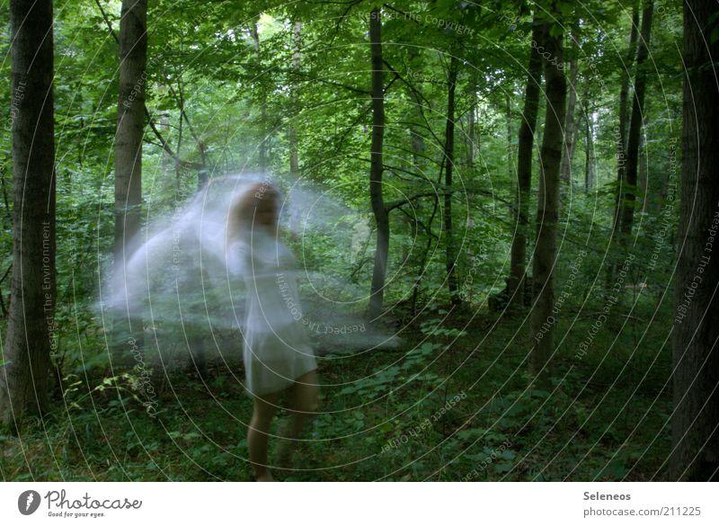 verwirbelte Waldfee Frau Mensch Natur weiß Baum Pflanze feminin Umwelt Bewegung träumen Tanzen Ausflug ästhetisch Kleid Idylle