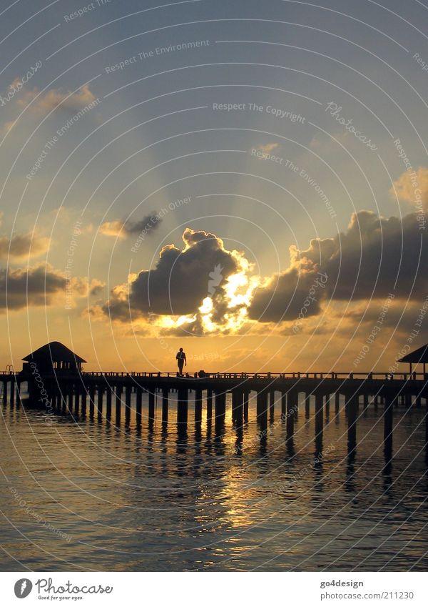 Golden sun Luft Wasser Himmel Wolken Sonnenaufgang Sonnenuntergang Sonnenlicht Meer Malediven Brücke exotisch Ferne Unendlichkeit Wärme blau gold schwarz