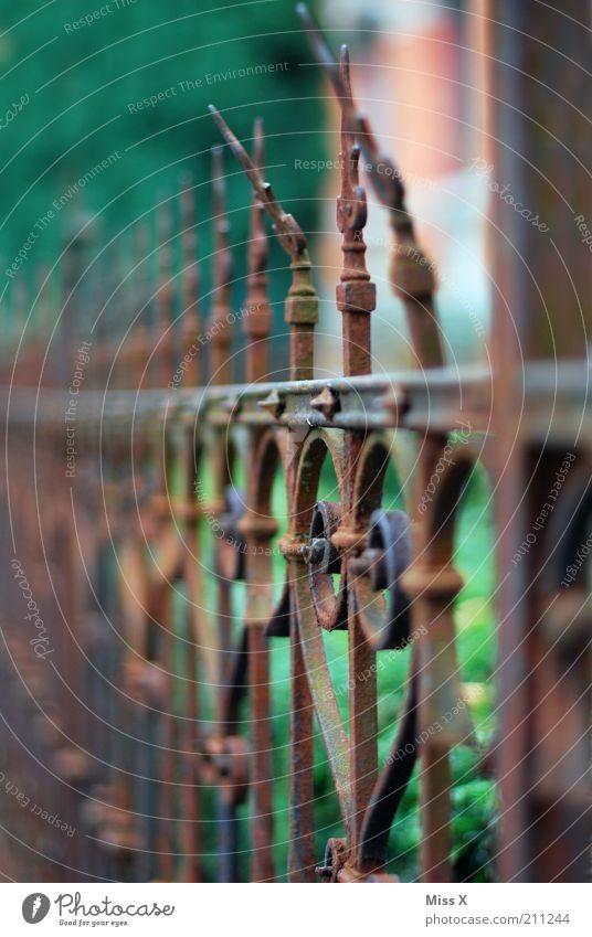 Gitter alt Garten Metall Vergänglichkeit Spitze Verfall Rost Zaun gekrümmt Knick verwittert Gußeisen Gartenzaun Metallzaun herzförmig