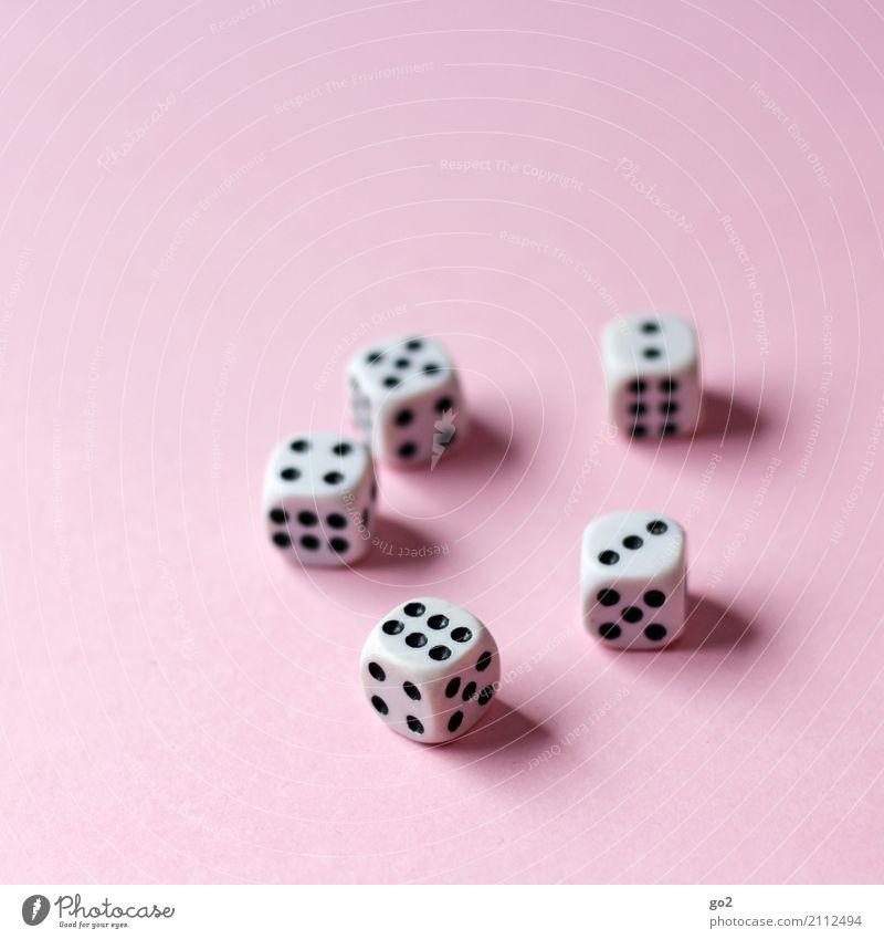 Würfel Freizeit & Hobby Spielen Glücksspiel Ziffern & Zahlen Erfolg Freude Konkurrenz Misserfolg 2 3 5 6 4 Farbfoto Innenaufnahme Studioaufnahme Nahaufnahme