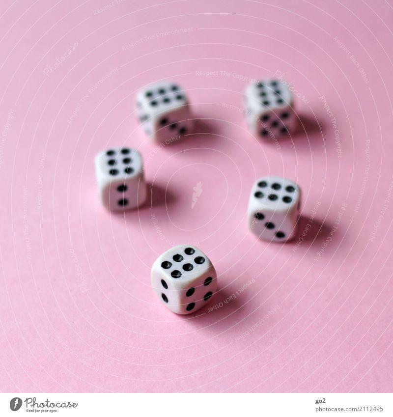 Volle Punktzahl Freizeit & Hobby Spielen Glücksspiel Kinderspiel Würfel Würfelspiel Ziffern & Zahlen Erfolg würfeln 6 Farbfoto Innenaufnahme Studioaufnahme