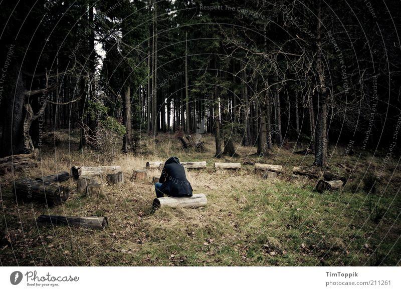 Horch hinein grün Einsamkeit schwarz Wald dunkel Traurigkeit Denken sitzen nachdenklich Trauer Sitzung Baumstamm Seele verloren Waldboden Zweige u. Äste