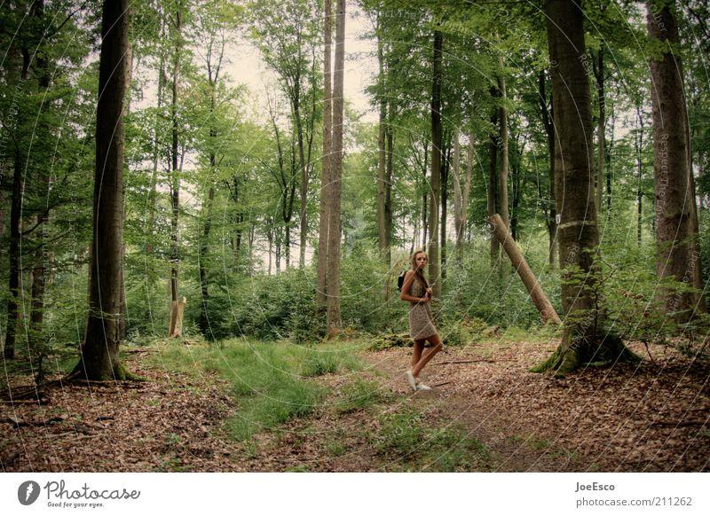 #211262 Lifestyle Freizeit & Hobby Ausflug wandern Frau Erwachsene Leben Natur Baum Gras Sträucher Wald Kleid langhaarig Erholung Blick stehen träumen warten