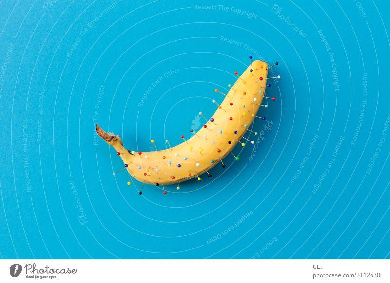 bananadel blau gelb lustig Kunst außergewöhnlich Lebensmittel Design Frucht Ernährung Dekoration & Verzierung ästhetisch Kreativität verrückt Fröhlichkeit