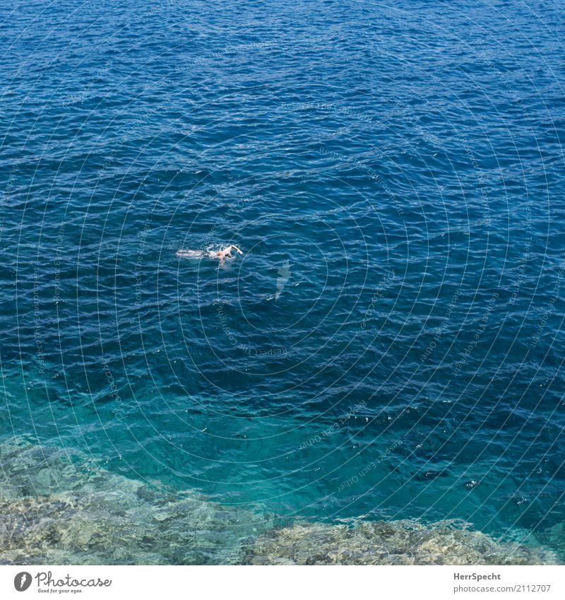 Freier Stil Mensch Ferien & Urlaub & Reisen Mann blau grün Meer Strand Erwachsene Leben natürlich Küste klein Schwimmen & Baden maskulin Körper Wellen