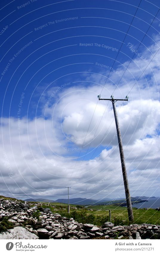 Telegraph Row Umwelt Natur Landschaft Himmel Wolken Sommer Schönes Wetter Gras Sträucher Feld Hügel Küste Meer Atlantik Steinmauer Menschenleer Strommast Kabel