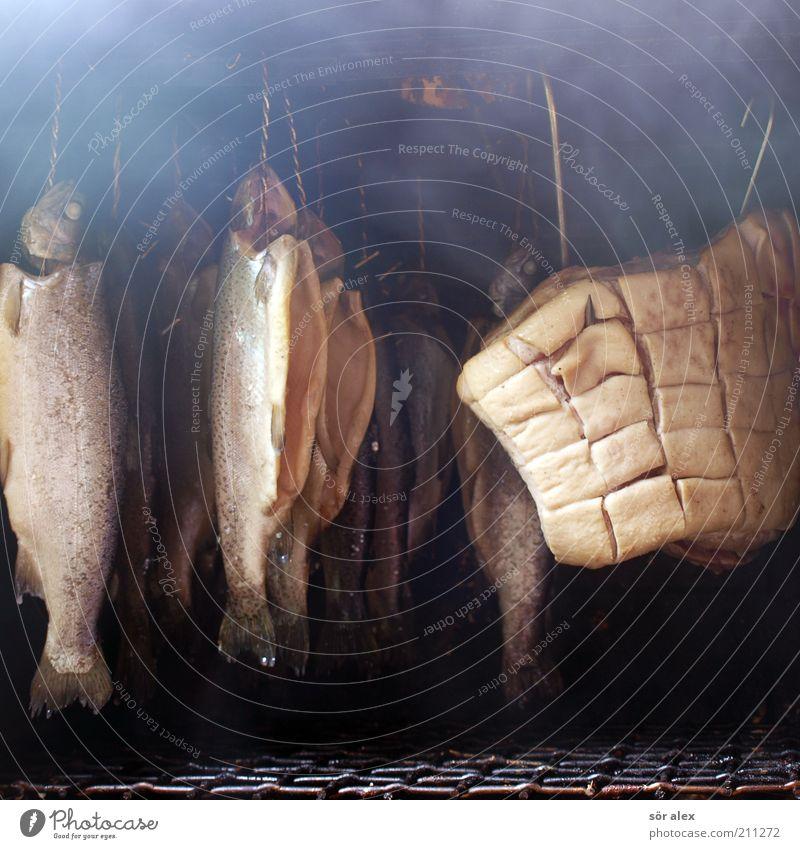 Selbstversorger Ernährung Lebensmittel Metall frisch Fisch Kochen & Garen & Backen Handwerk Rauch Appetit & Hunger lecker hängen Mahlzeit Fleisch saftig Haken