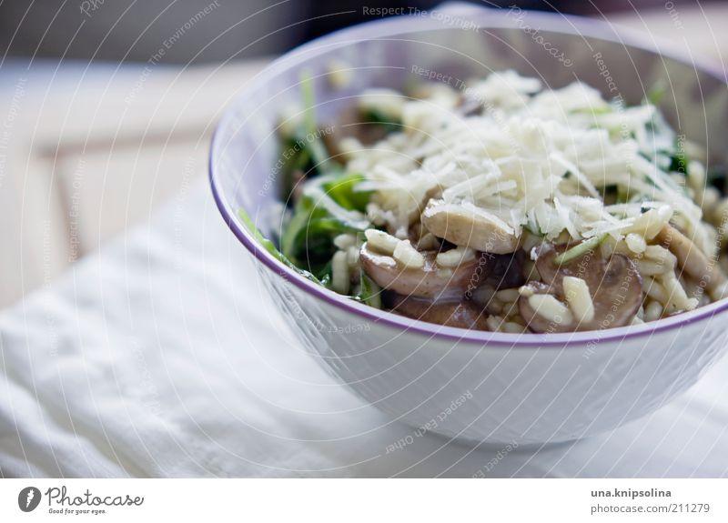 pilzrisotto weiß Lebensmittel frisch Ernährung Kochen & Garen & Backen Getreide Gemüse Appetit & Hunger lecker Geschirr Bioprodukte Abendessen Pilz